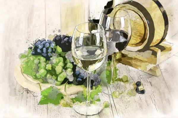 Quel verre à vin dégustation choisir ?